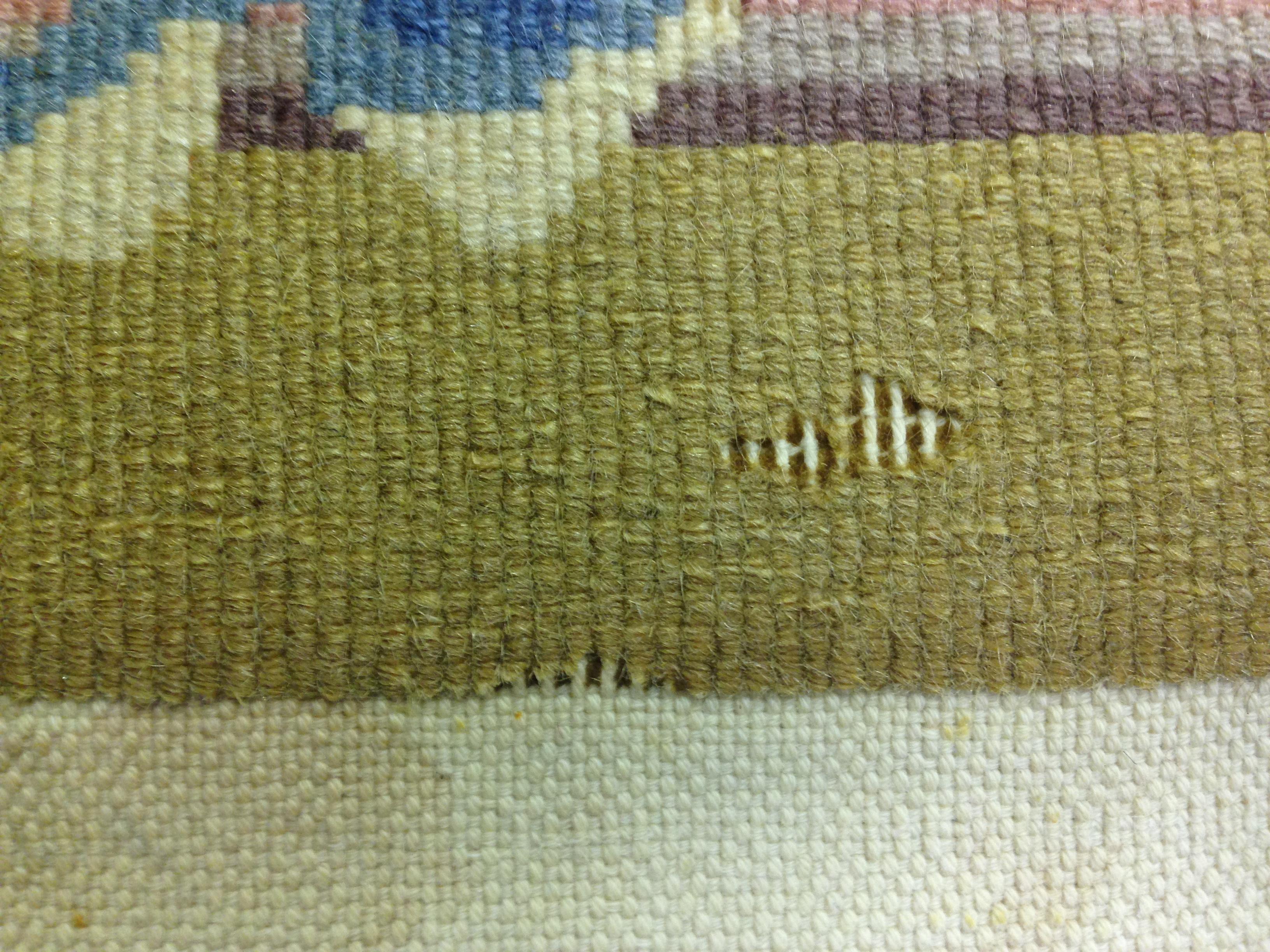 Wool Carpet Moth Infestation Floor Matttroy