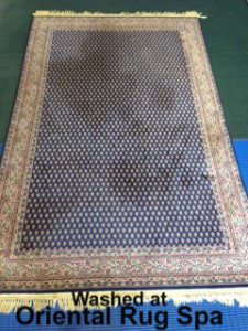 Pet Stained Carpet - Oriental Rug Cleaning Virginia Water
