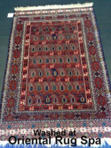Persian Quchan Carpet - Rug Cleaning Windsor