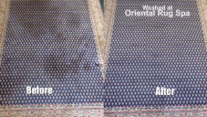 Pet Urine Stains Removed - Persian Rug Cleaning Egham
