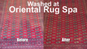 Pakistani Bukhara Carpet - Persian Cleaning Farnborough