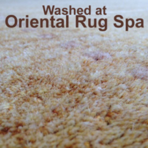 Indian Carpet Detail - Oriental Rug Cleaning Hook