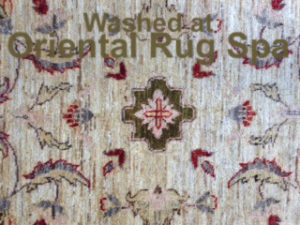 Afghan Ziegler Design - Persian Rug Cleaning Chobham, Woking