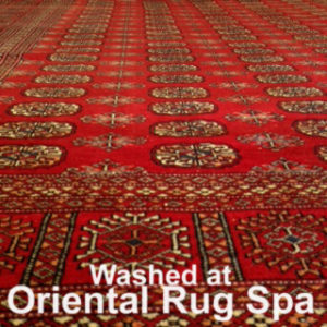 Pakistani Bukhara - Oriental Rug Cleaning Lightwater
