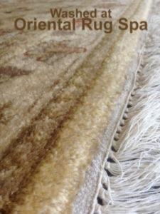 Indian Ziegler Carpet - Oriental Rug Cleaning Bagshot