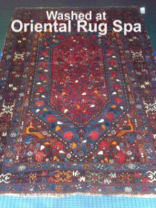 South West Persian Quashgai Carpet - Rug Cleaning Bagshot