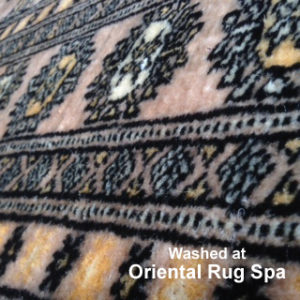Pakistani Bukhara Carpet - Persian Oriental Rug Cleaning Wokingham