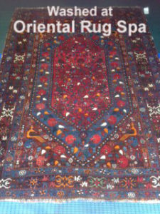 Persian Quashgai Carpet - Oriental & Persian Rug Cleaning Fleet, Hampshire